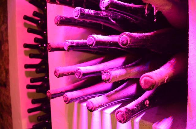 Trenz wine aging