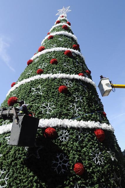Giant Christmas tree erected in Jardin Guerrero