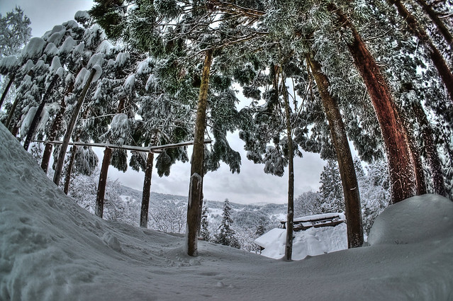 雪降って山へ行く