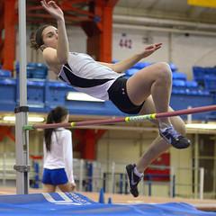floor gymnastics(0.0), 110 metres hurdles(0.0), pole vault(0.0), hurdle(0.0), gymnastics(0.0), artistic gymnastics(0.0), uneven bars(0.0), rings(0.0), physical exercise(0.0), athletics(1.0), track and field athletics(1.0), sports(1.0), high jump(1.0), gymnast(1.0), heptathlon(1.0), athlete(1.0),