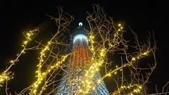 Tokyo Skytree and Christmas lights