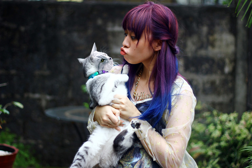 Purple-Cat