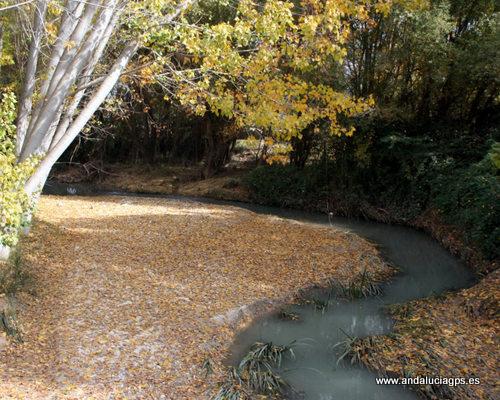 Granada - Deifontes - Río Cubillas - 37 19' 33 -3 35' 42