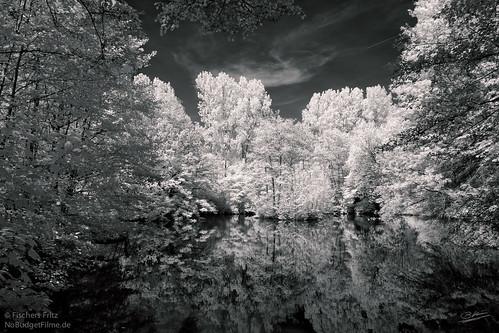 Teich_II-Infrared.jpg
