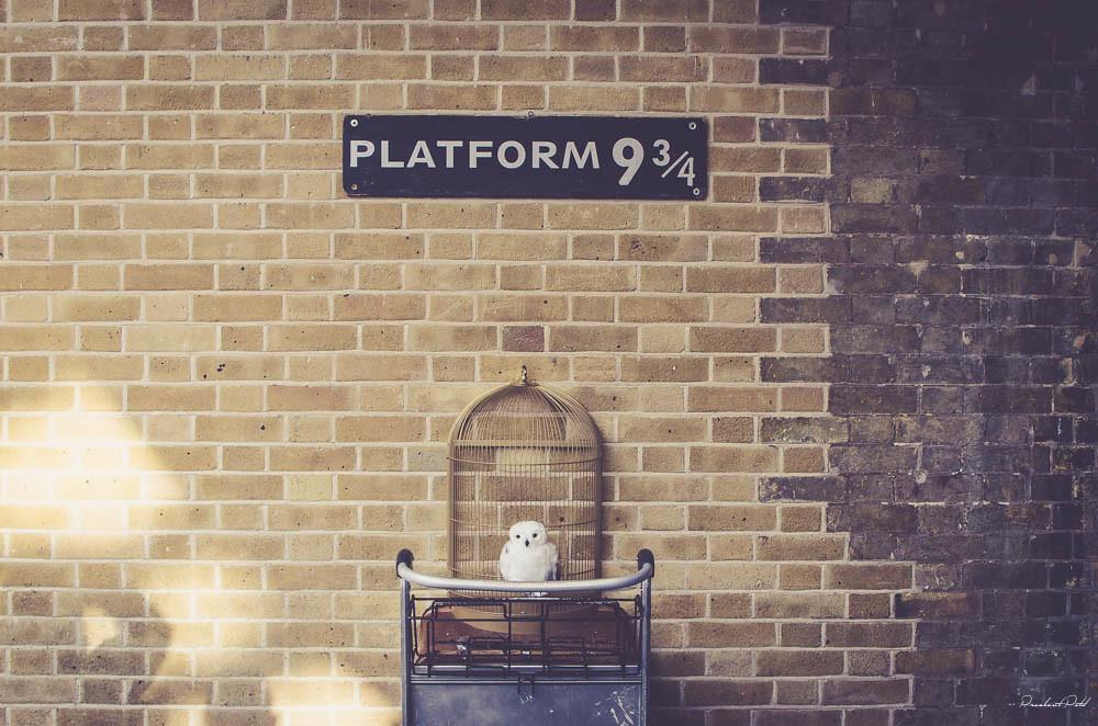 Ruta Harry Potter