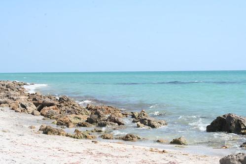 Florida May 2014 (23)