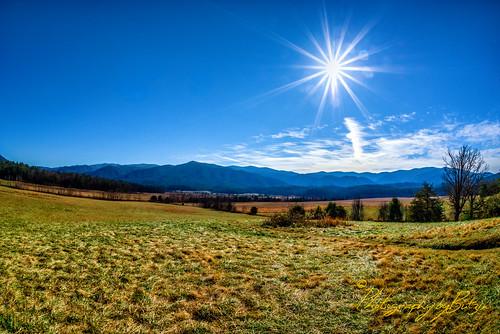 sun grass clouds bluesky pasture greatsmokymountains cadescove greatsmokymountainsnationalpark smokymountainsnationalpark treessky