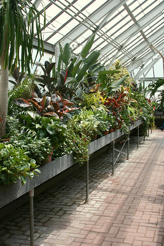38_greenhouse_tables