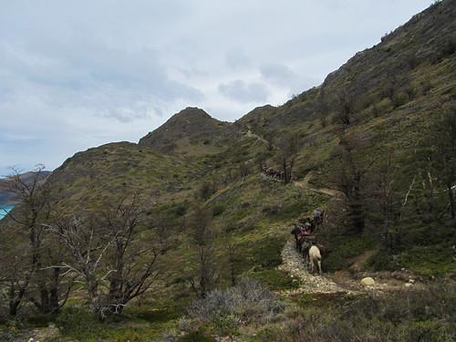 Torres del Paine: c'est ici que nous pique-niquerons avant d'entamer cette belle montée...Mais comment sont réapprovisionnés les refuges du trek du W ? A cheval !