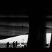 IMG16_7830 by _Jota_