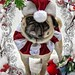 Pug Christmas Card by DaPuglet