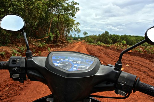 a motorbike's perspective: a windy mud road