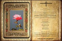 Lectura Libro de Isaías 49,1-6. Lunes 24 Junio 2013