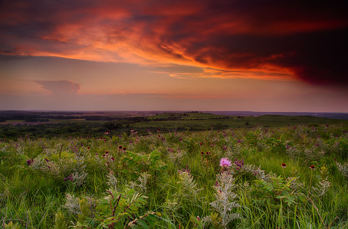 sunset usa storm composite clouds echinacea manhattan ks multipleexposure prairie muskthistle hdr highdynamicrange konzaprairie carduusnutans focusstacking noddingthistle 5dm3 manualfocusstacking