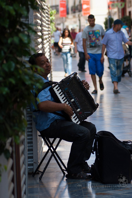 Tesoro LVM: 7 Músico callejero