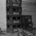 Coca-Cat