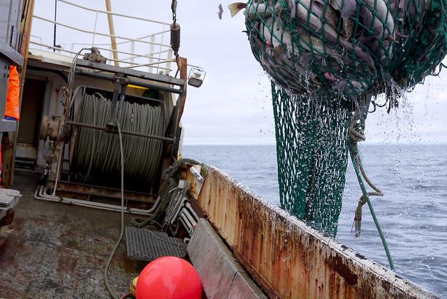 Aboard fishing boat Hafrún HU-12
