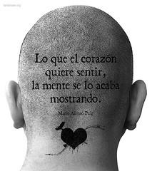 lo_que_el_corazon