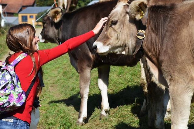 Diana acariciando una vaca
