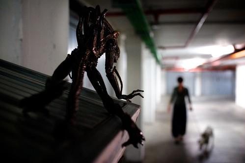 """226/365 - """"Alien(ation)"""" nr.14 by Luca Rossini"""