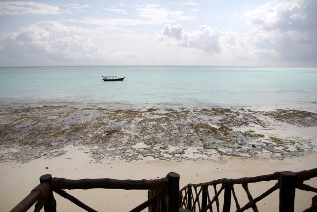 Low tide in Zanzibar