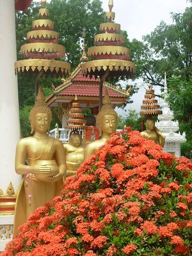 Vientiane 2007-Wat Sisaket (92)