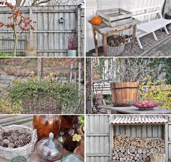 trädgården i november