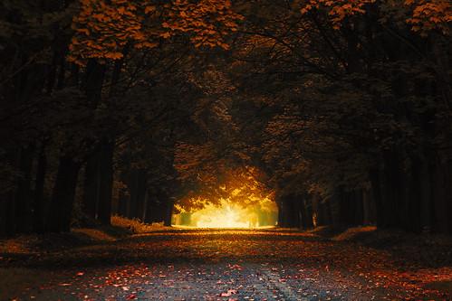 Autumn [Exlpored 12/11/2013 #44]