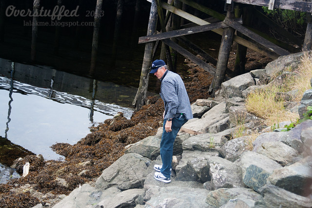 Grandpa saving Sophia's rocks in Ketchikan