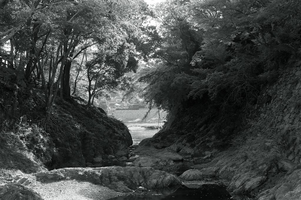 向こうに見える景色|臥龍山荘|愛媛県大洲市