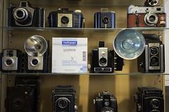 Test 35mm lenses on a7