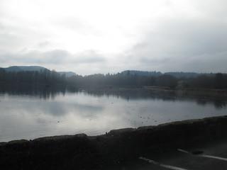 Vernonia Lake