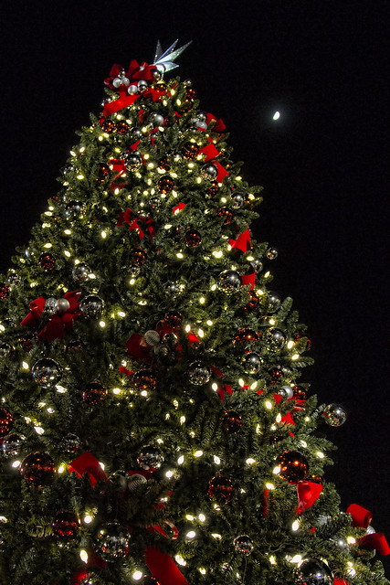 Downey Christmas Tree Lighting