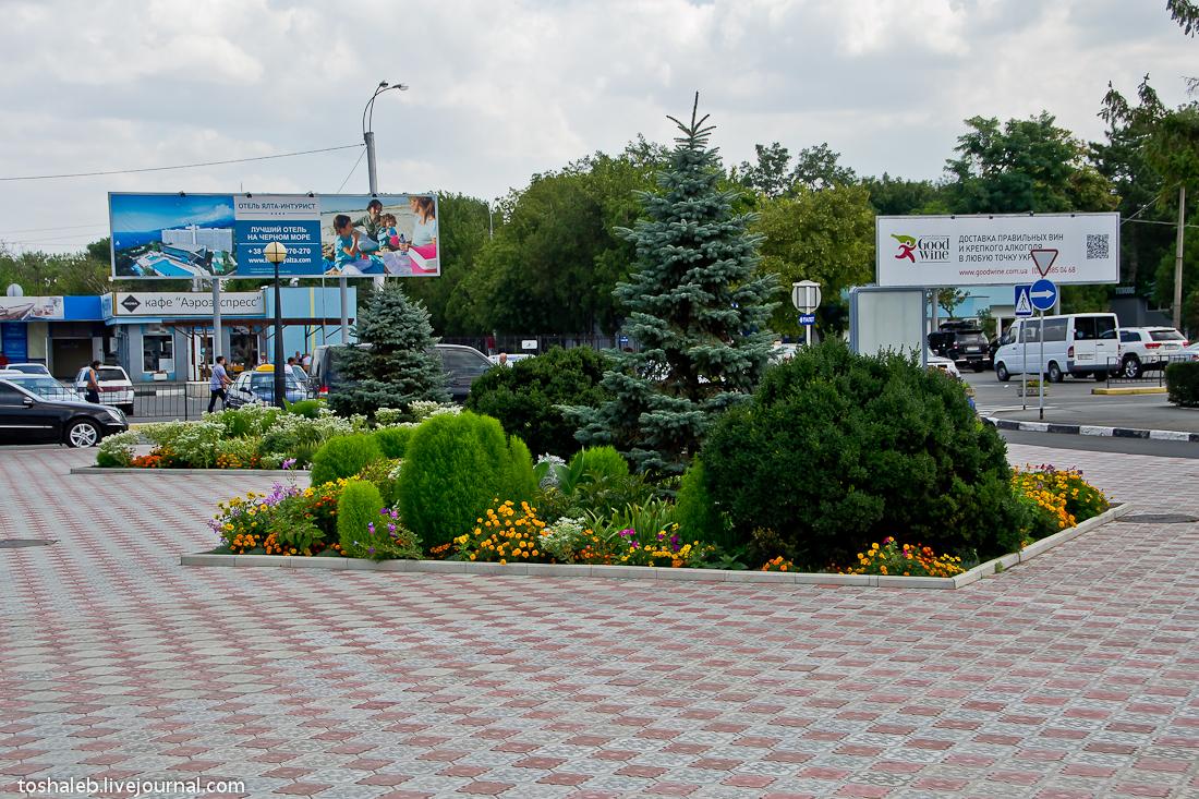 Симферополь-Домодедово-6