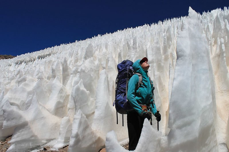 Dwarfed by the Pissis penitentes