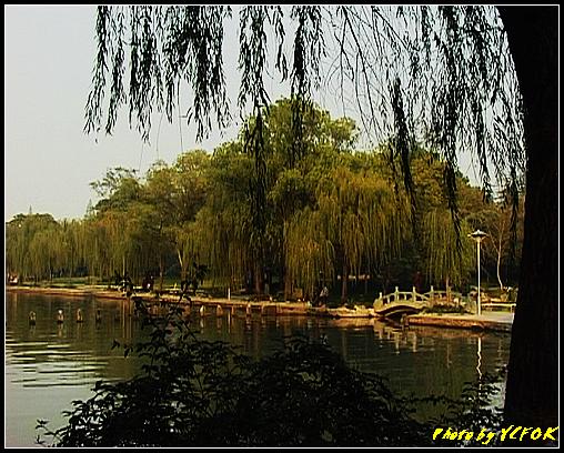 杭州 西湖 (其他景點) - 513 (西湖十景之 柳浪聞鶯 在這裡準備觀看 西湖十景的雷峰夕照 (雷峰塔日落景致)