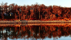 Reflections on the Red