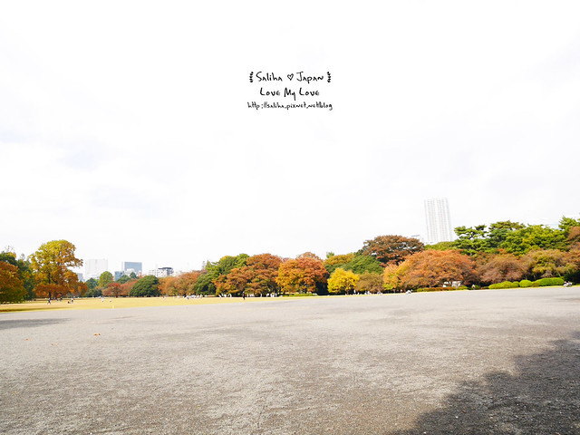 日本東京自由行新宿御苑庭園景點 (8)