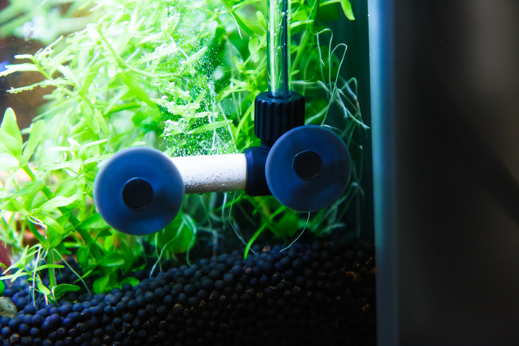 how to adjust co2 flowrate in a planted aquarium spec tanks