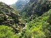 Sentier de la Spelunca : l'Aitone et le début de ses gorges
