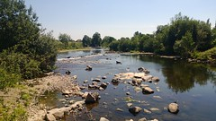 Thorverton River