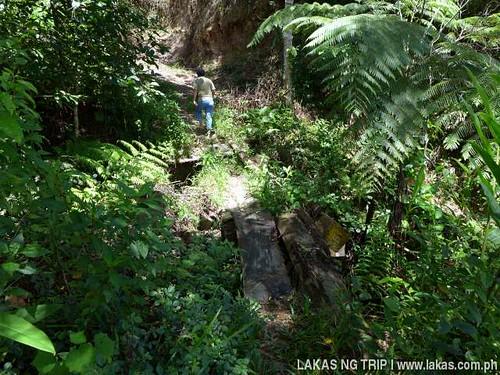 Damaged wooden bridge to New Rizal Waterfalls in Dumarao, Roxas, Palawan