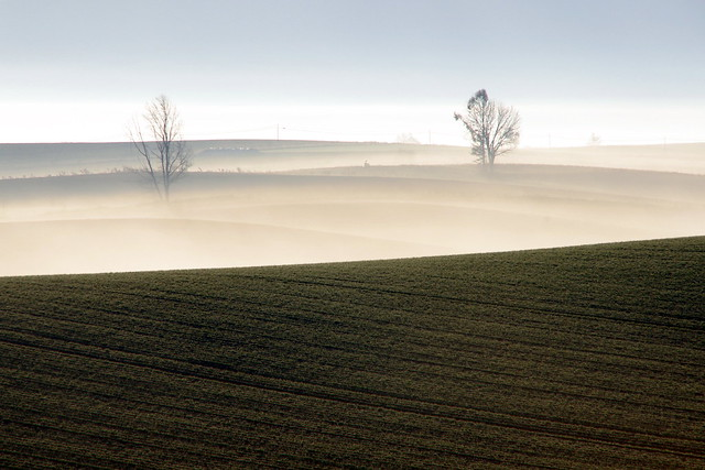 漂泊の朝霧4