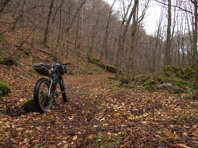 leicester hollow trail