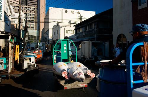 Mercado de Tsukiji by Ramon San Juan