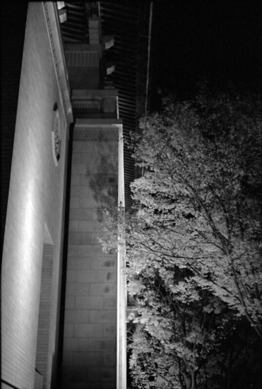 20131128 Leica3fSummarit50 TMY TMD 005