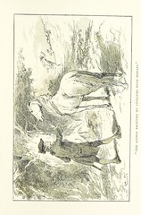 """British Library digitised image from page 337 of """"Gulliver's Travels ... Illustrated ... by Gordon Browne"""""""