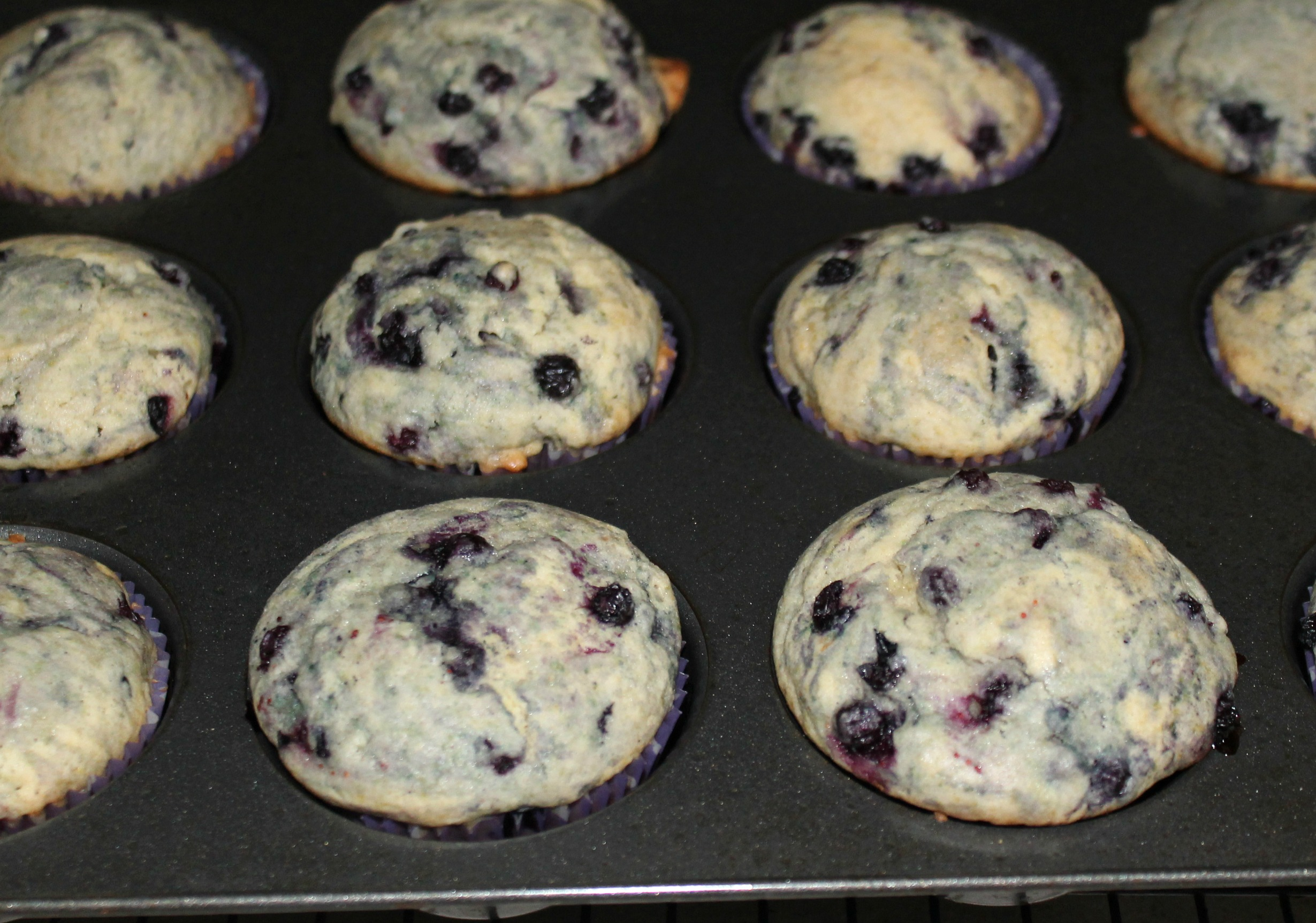 Blueberry Citrus Muffins - Baked