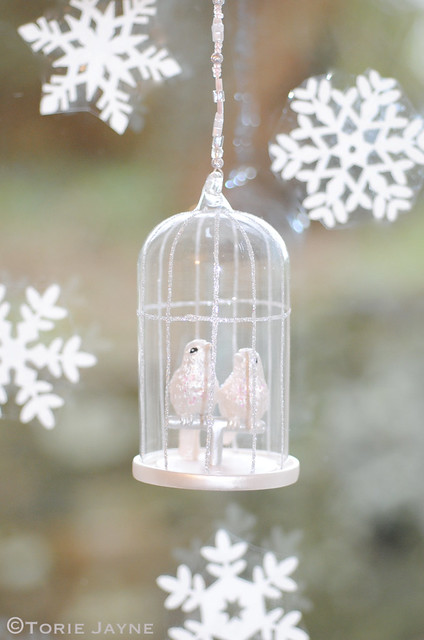 Hanging birdcage from inside