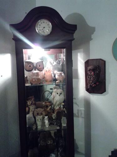 Owl Corner (Nov 7 2013)